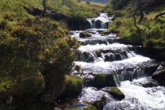 Sparkling stream on the Beacons